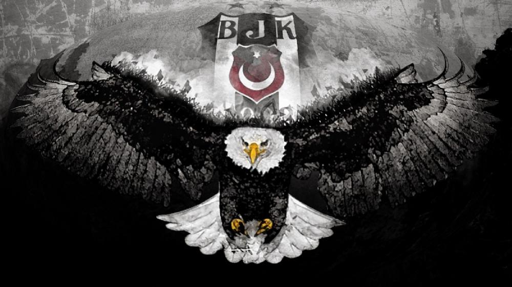 bjk-q7
