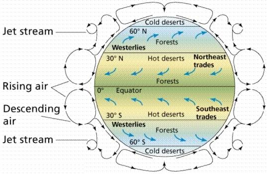 Küresel Hava Sirkülasyonu