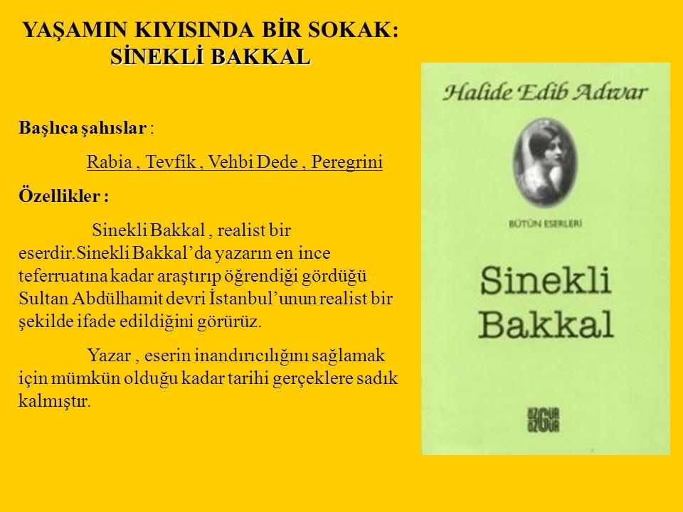Bir töre romanı olan Halide Edip Adıvar'ın Sinekli Bakkal isimli eserinin özellikleri