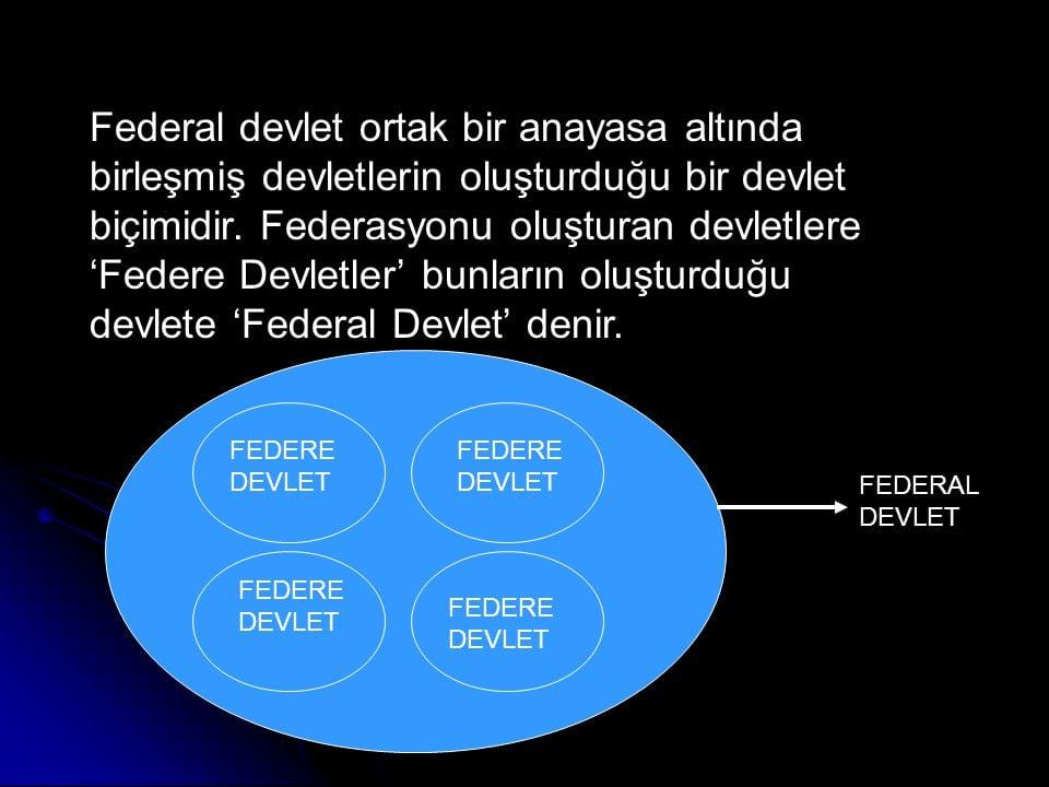 Federal devletlerin yapısı nasıldır..