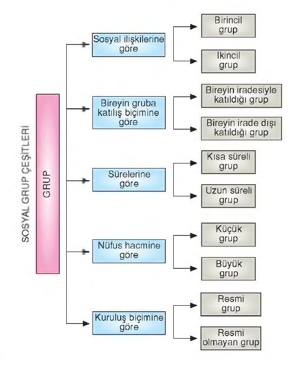 Sosyal gruplar şeması