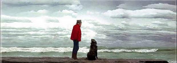 Bilge ile köpeğin hikayesi