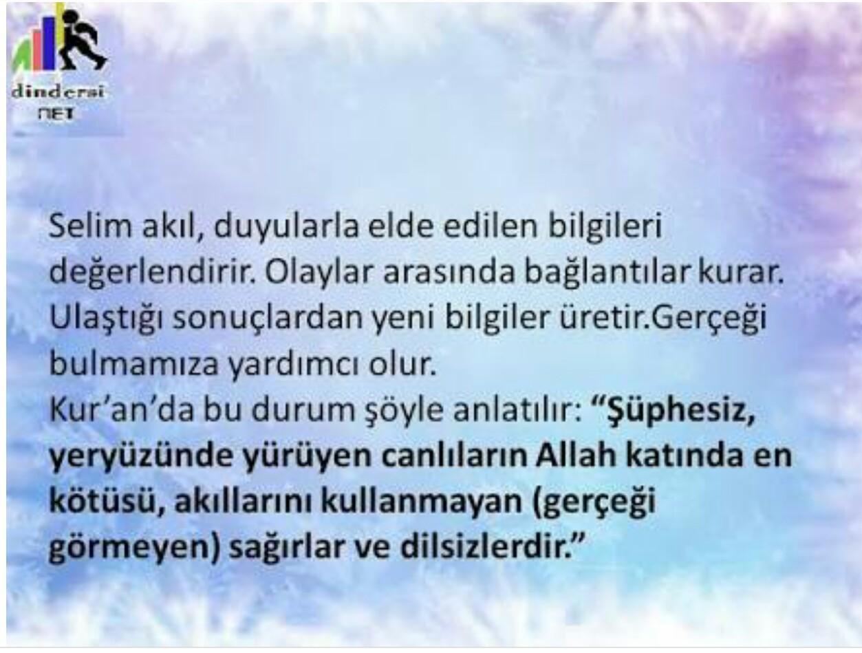 Selim akıl hakkında bilgiler