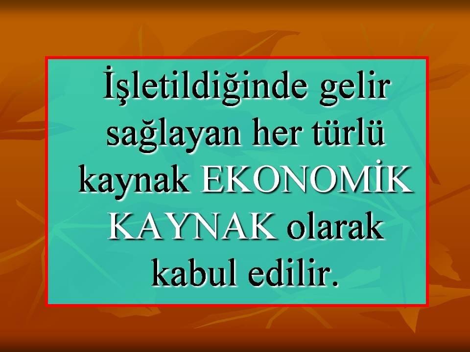 Ekonomik Kaynaklar