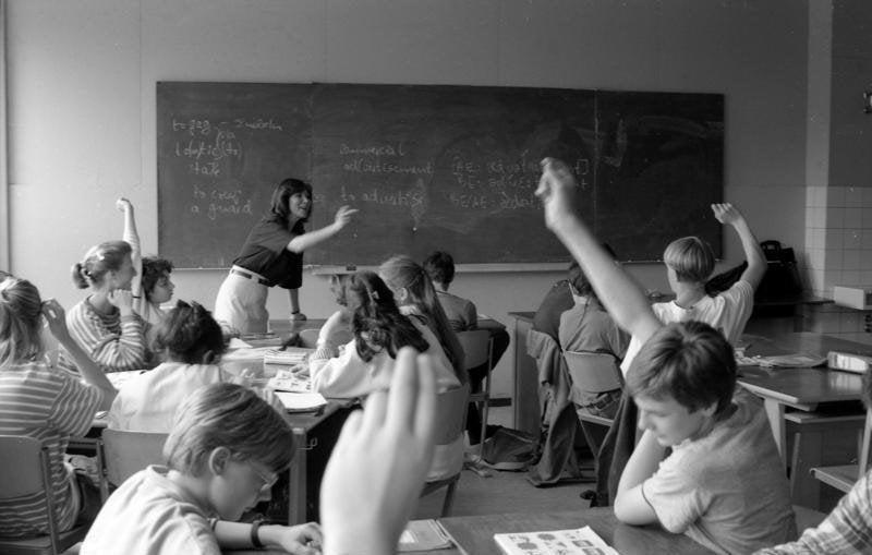 Pedagoji Nedir