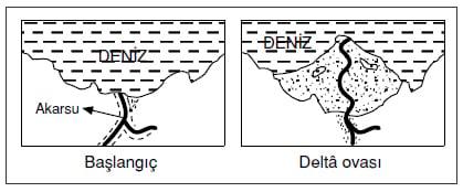 Delta ovası nasıl oluşur