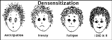 System Desensitization