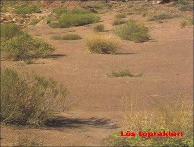 Lös topraklar