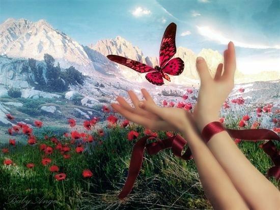 Seyahat ve Yerleşme Özgürlüğü