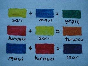 Doğanın Renkleri