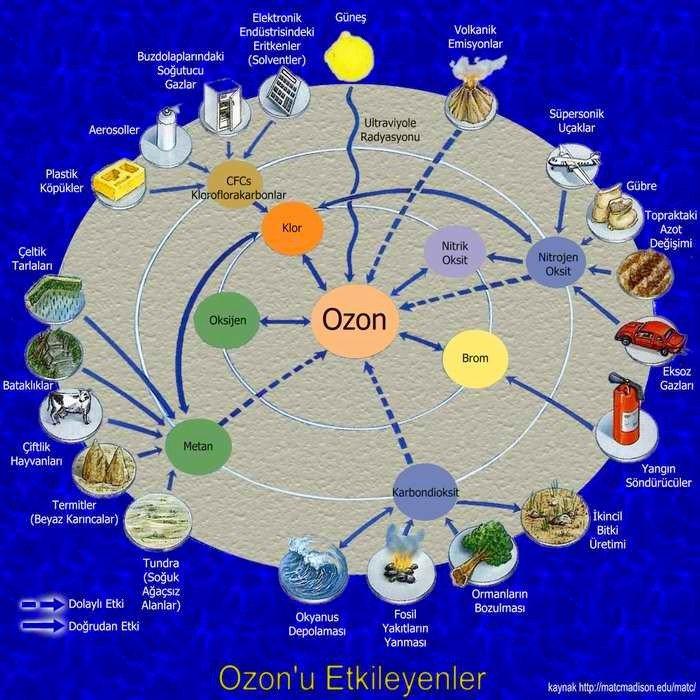 Ozon Tabakasının Delinmesinin Nedenleri