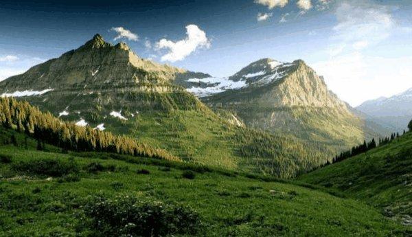 Dağ Biyomu