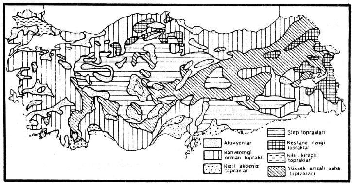 Karadenizin Toprak Özellikleri Haritası