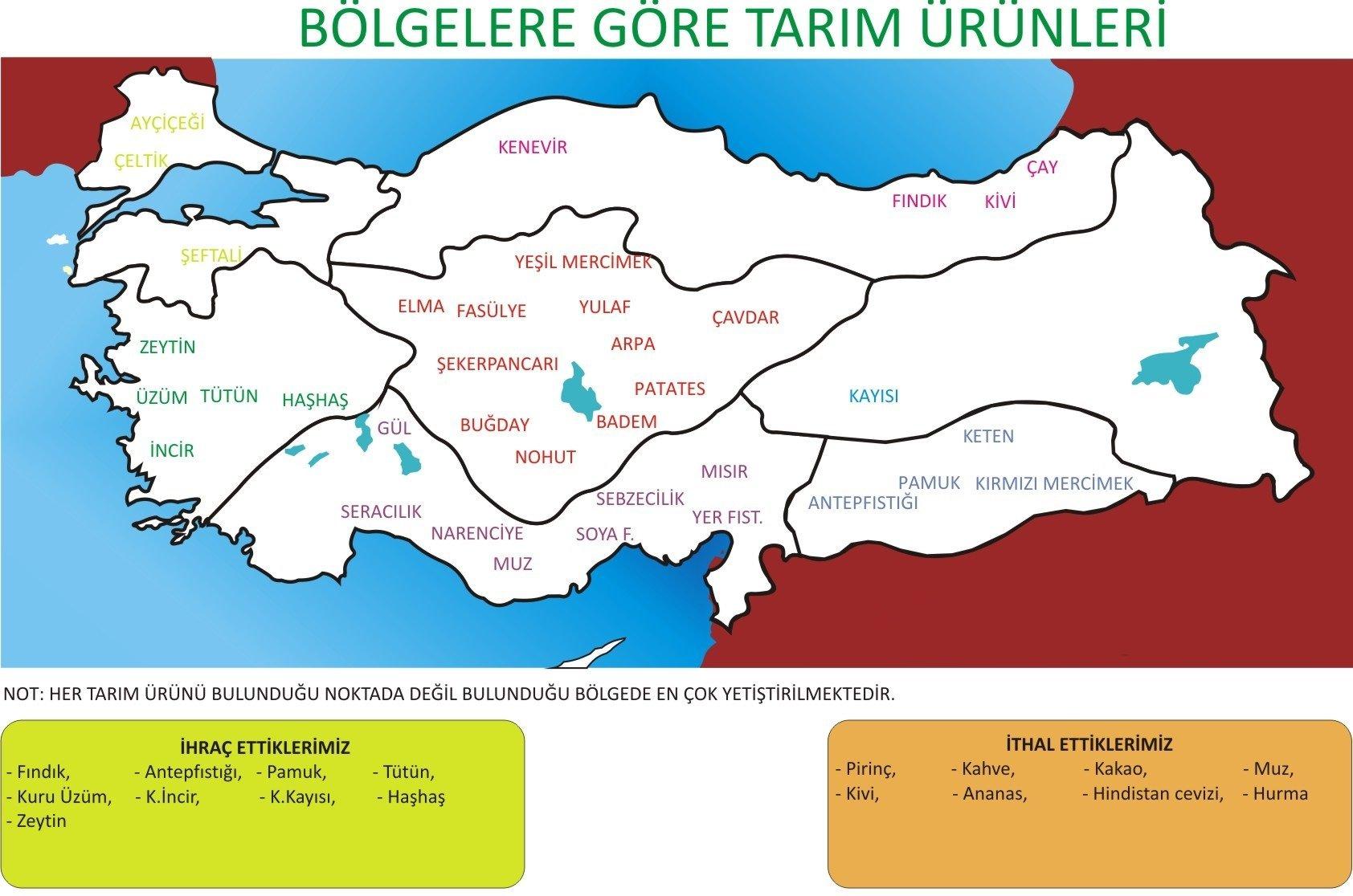 Karadeniz Bölgesinde Tarım